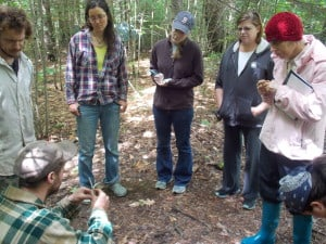 Future & present herbalists learn responsible foraging and preparation backyard plants for food and medicine.